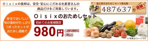 Oisixお試しセット980円